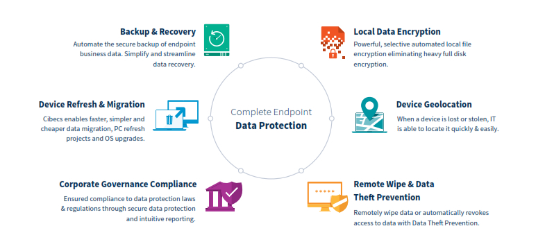 Data Protection Software graphic